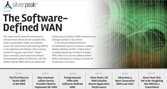 The Software-Defined WAN